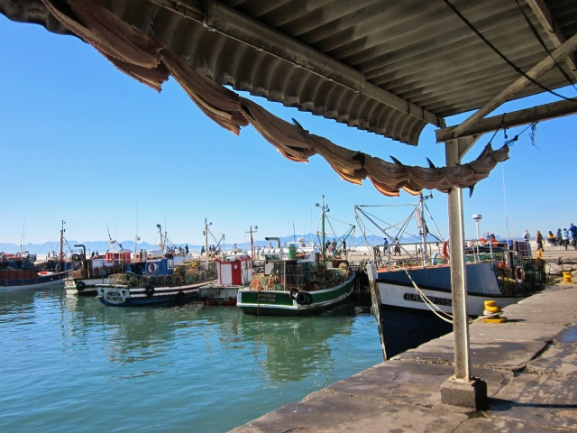 kalk bay fab pic with boats and drying snoek