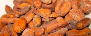 Cocoa beans high res