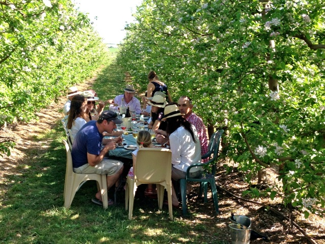 Come and feast and relax among the apple trees on Terra Madre Market Days